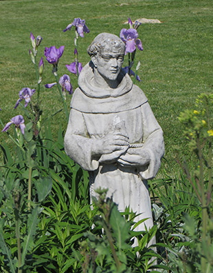 St. Francis assist in grounding